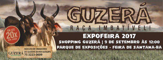 Shopping ExpoFEIRA 2017