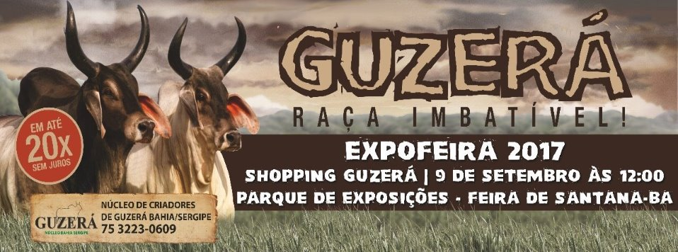 Shopping ExpoFEIRA 2017