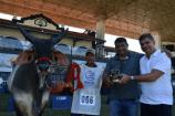 Reservado Campeão Touro Jovem da Raça Guzerá na 84ª Expozebu